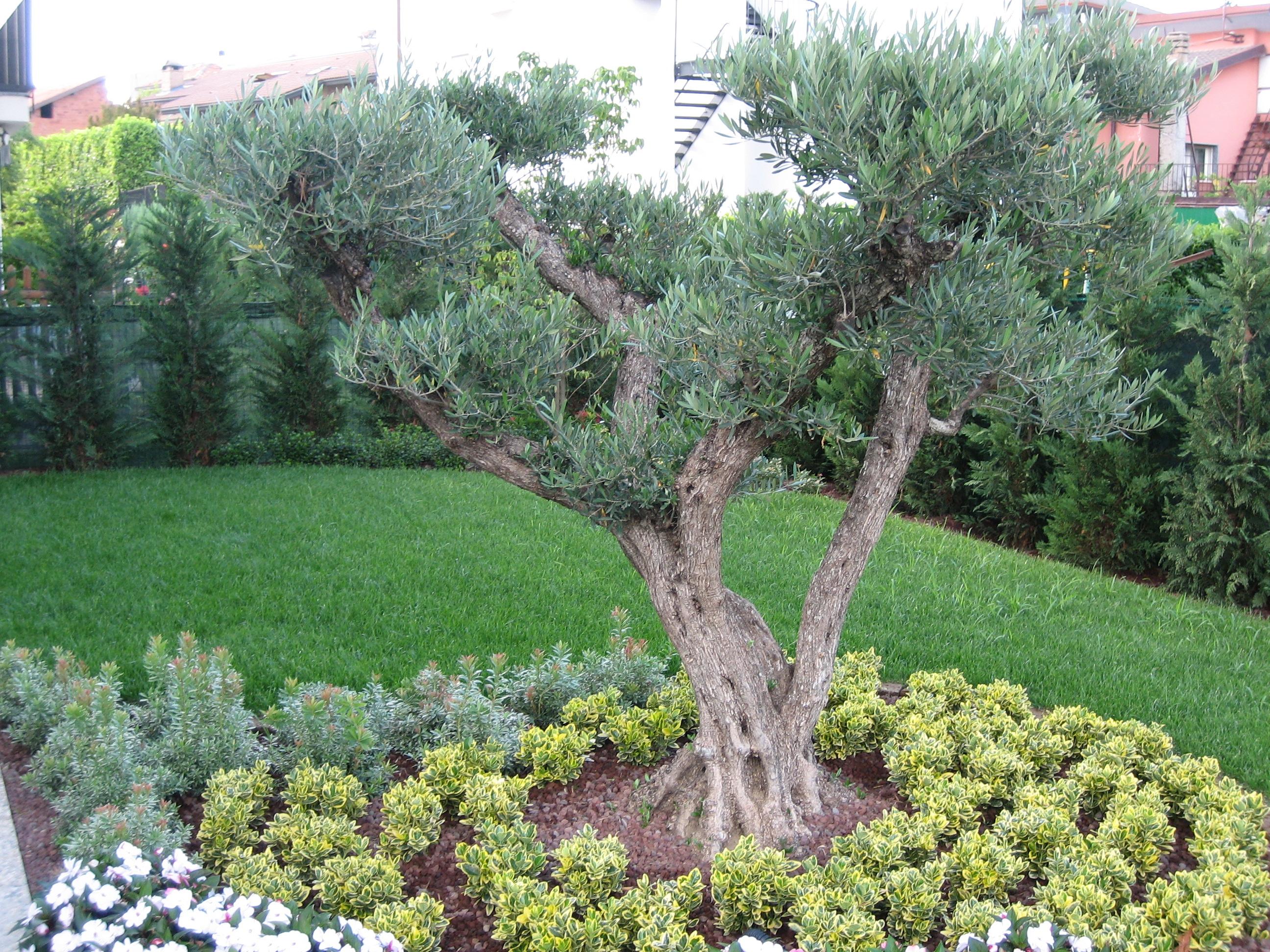 giardini 002