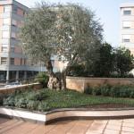 giardini 070